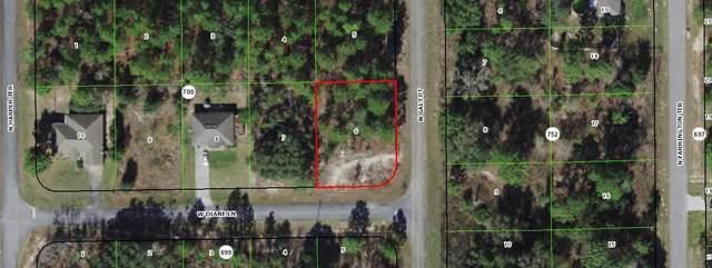 2541 W Diane Lane, Citrus Springs, FL 34434 (MLS #RX-10714690) :: Castelli Real Estate Services