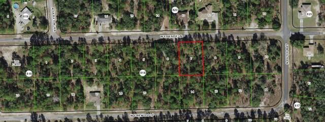 3882 W Fireside Lane, Citrus Springs, FL 34433 (MLS #RX-10714730) :: Castelli Real Estate Services