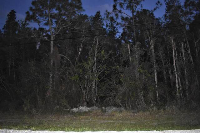 00000 Undisclosed, Loxahatchee, FL 33470 (MLS #RX-10714889) :: Castelli Real Estate Services