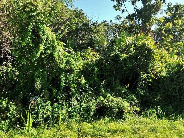 2091 SW Judith Lane, Port Saint Lucie, FL 34953 (MLS #RX-10716005) :: Castelli Real Estate Services
