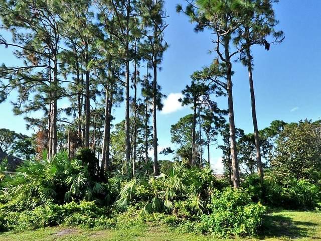 433 SE Voltair Terrace, Port Saint Lucie, FL 34984 (MLS #RX-10717082) :: Dalton Wade Real Estate Group
