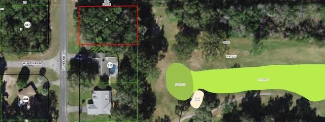 8531 N Upland Drive, Citrus Springs, FL 34434 (MLS #RX-10718388) :: Castelli Real Estate Services