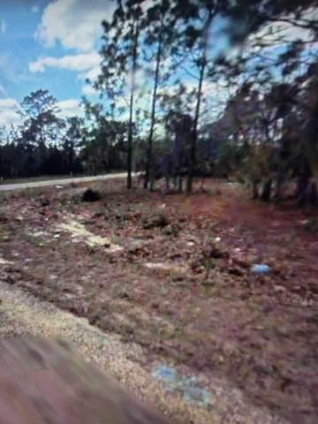 9913 N Swanee Terrace, Citrus Springs, FL 34433 (MLS #RX-10720138) :: Castelli Real Estate Services