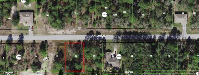 2382 W Paragon Lane, Citrus Springs, FL 34434 (MLS #RX-10720609) :: THE BANNON GROUP at RE/MAX CONSULTANTS REALTY I