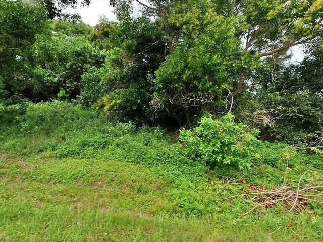 3020 SW Ann Arbor Road, Port Saint Lucie, FL 34953 (#RX-10722266) :: Michael Kaufman Real Estate