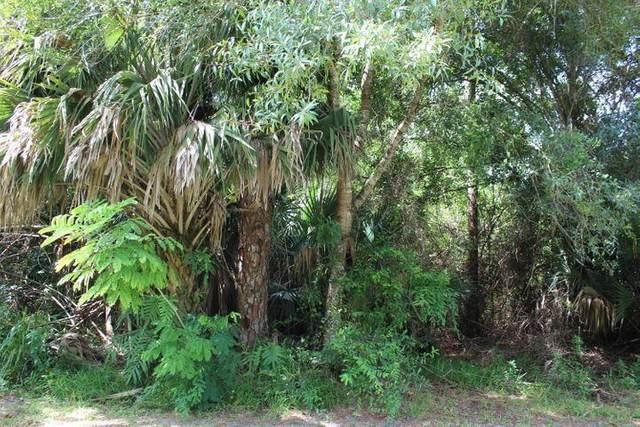 3441 C Road, Loxahatchee Groves, FL 33470 (#RX-10725357) :: Dalton Wade