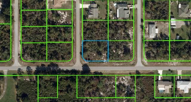 1250 Jersey Street NE, Lake Placid, FL 33852 (#RX-10725634) :: The Power of 2 | Century 21 Tenace Realty