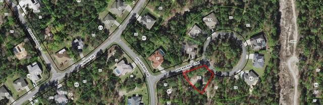 3 Hackberry Court N, Homosassa, FL 34446 (MLS #RX-10726919) :: Castelli Real Estate Services