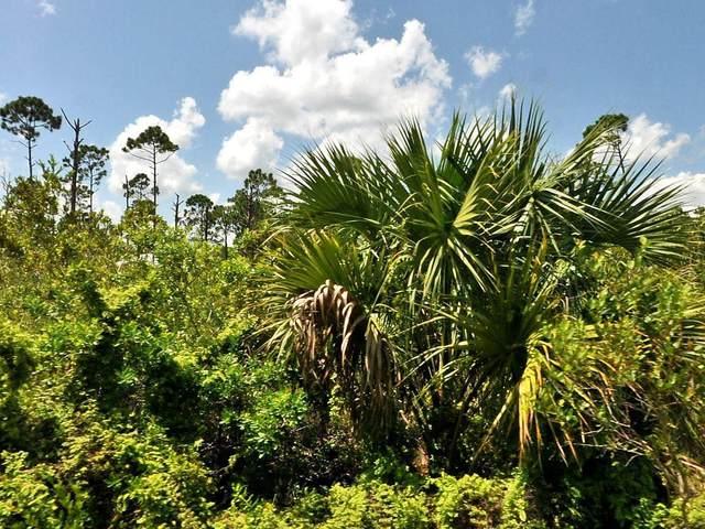 Tbd Bald Cypress Trail, Fort Pierce, FL 34951 (#RX-10727824) :: The Rizzuto Woodman Team
