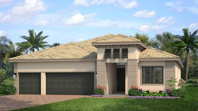 15712 Longboat Key Drive, Westlake, FL 33470 (#RX-10730901) :: Ryan Jennings Group