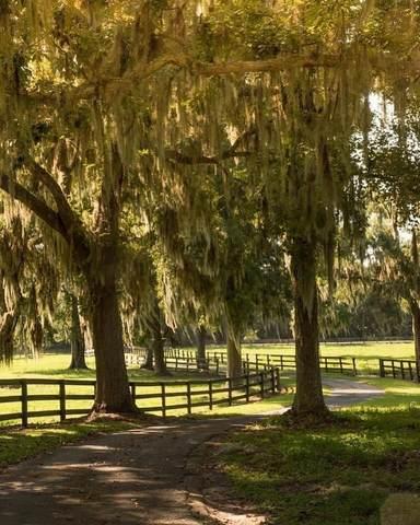 6005 W Highway 316, Reddick, FL 32686 (#RX-10732461) :: Dalton Wade