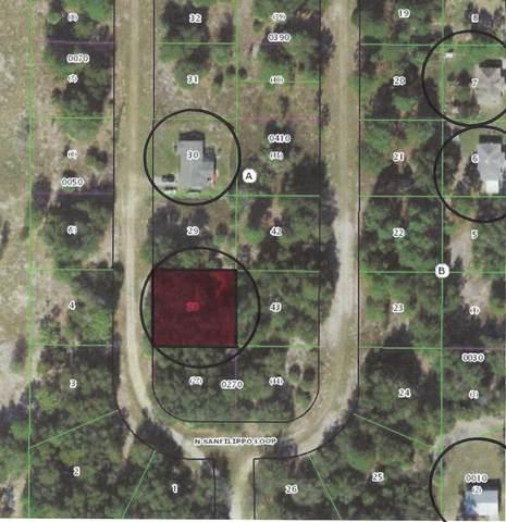 8584 N Sanfilippo Loop, Crystal River, FL 34428 (#RX-10733088) :: The Reynolds Team | Compass