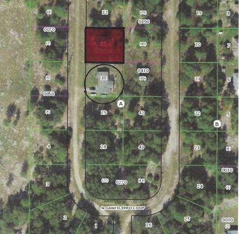 8644 N Sanfilippo Loop, Crystal River, FL 34428 (#RX-10733091) :: The Reynolds Team | Compass