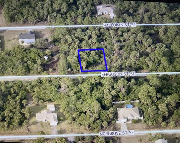161 Ferguson Street, Palm Bay, FL 32909 (MLS #RX-10734409) :: Berkshire Hathaway HomeServices EWM Realty