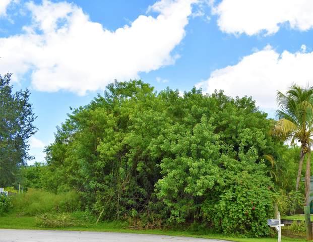 289 SW Odin Court, Port Saint Lucie, FL 34953 (MLS #RX-10734416) :: Castelli Real Estate Services
