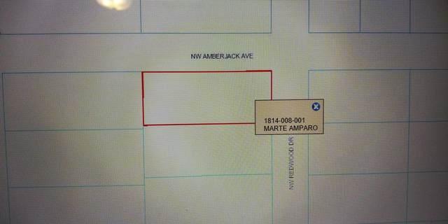 00 Redwood Road, Dunnellon, FL 34431 (MLS #RX-10737078) :: Castelli Real Estate Services