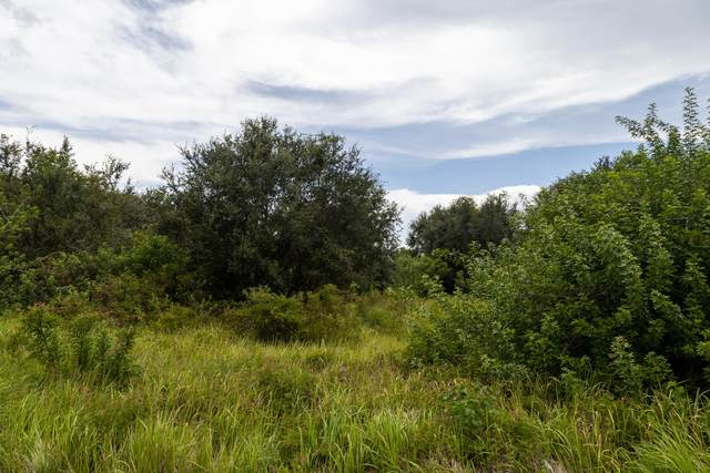 7450 SW Conners Highway, Okeechobee, FL 34974 (MLS #RX-10737760) :: Castelli Real Estate Services