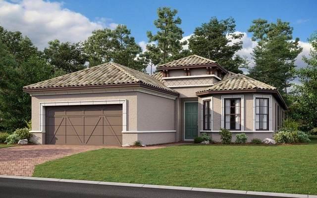 12989 SW Ambra Street, Port Saint Lucie, FL 34987 (#RX-10738875) :: Baron Real Estate