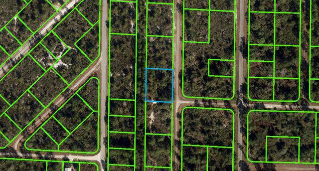 1146 Greco Street, Lake Placid, FL 33852 (MLS #RX-10739344) :: Castelli Real Estate Services