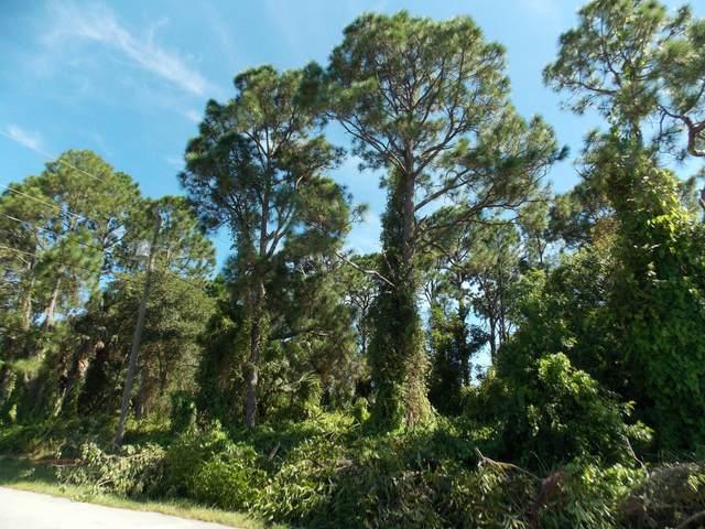 1030 SW Aurelia Avenue, Port Saint Lucie, FL 34953 (MLS #RX-10739700) :: Castelli Real Estate Services