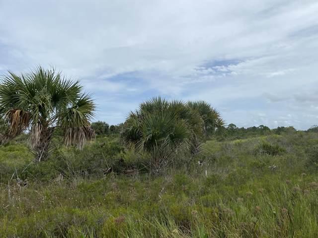 16481 NW 316th Street, Okeechobee, FL 34972 (MLS #RX-10741341) :: Castelli Real Estate Services