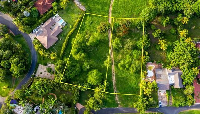 53-54 Vivero, Casa de Campo, DR 22000 (MLS #RX-10741422) :: Castelli Real Estate Services