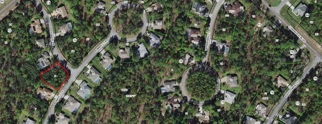 10 Bonnie Drive, Homosassa, FL 34446 (MLS #RX-10741734) :: Castelli Real Estate Services