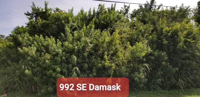 992 SE Damask Avenue, Port Saint Lucie, FL 34983 (#RX-10742753) :: Heather Towe   Keller Williams Jupiter
