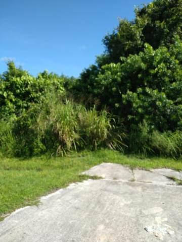250 NE Glentry Avenue NE, Port Saint Lucie, FL 34983 (MLS #RX-10743308) :: Castelli Real Estate Services