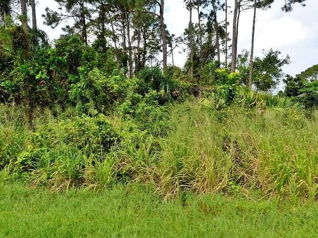 457 SE Guava Terrace, Port Saint Lucie, FL 34983 (MLS #RX-10744223) :: Castelli Real Estate Services
