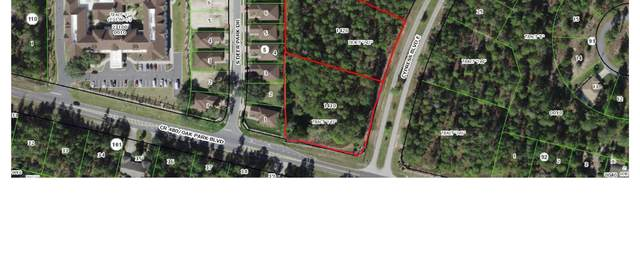 203 & 213 Cypress Boulevard E, Homosassa, FL 34446 (MLS #RX-10744867) :: Castelli Real Estate Services