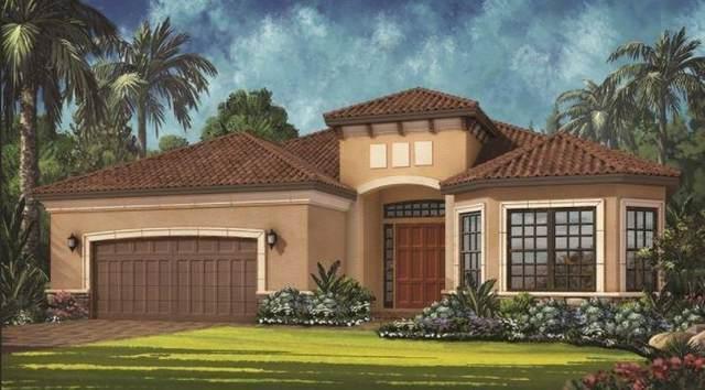 12897 SW Barelli Court, Port Saint Lucie, FL 34987 (#RX-10745197) :: Baron Real Estate