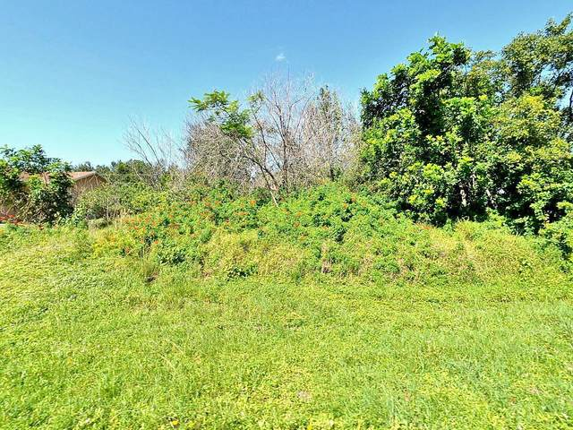 1029 SW Canary Terrace, Port Saint Lucie, FL 34953 (#RX-10745268) :: Heather Towe | Keller Williams Jupiter