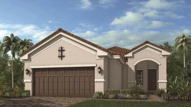 12733 SW Ambra Street, Port Saint Lucie, FL 34953 (#RX-10745560) :: Baron Real Estate
