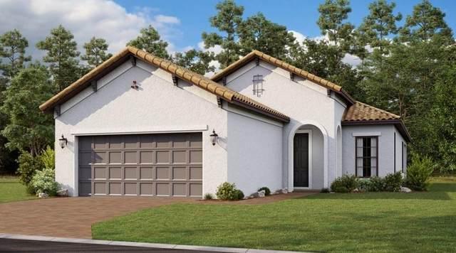 12749 SW Ambra Street, Port Saint Lucie, FL 34987 (#RX-10745572) :: Baron Real Estate