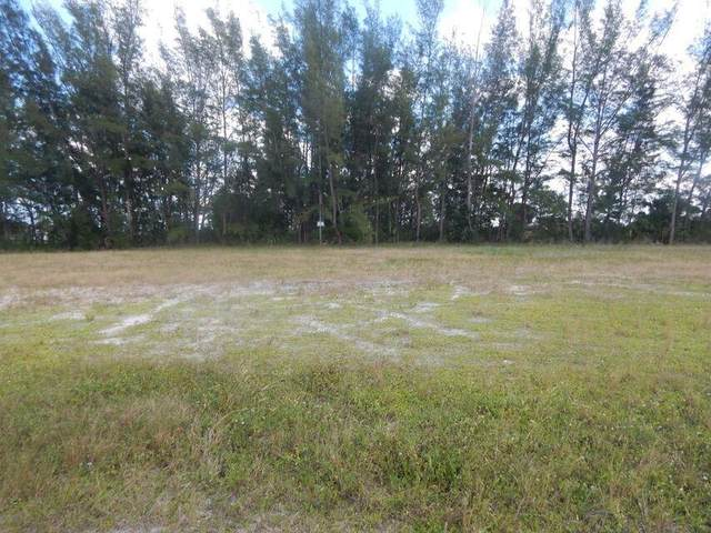 3905 NE 9th Avenue, Cape Coral, FL 33909 (MLS #RX-10746376) :: Castelli Real Estate Services