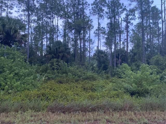 1047 Asther Street E, Lehigh Acres, FL 33974 (#RX-10746473) :: Dalton Wade