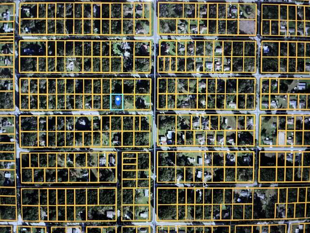 Tbd Summerfield, Summerfield, FL 34491 (MLS #RX-10746782) :: Castelli Real Estate Services