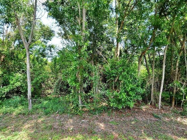 175 SW Amesbury Avenue, Port Saint Lucie, FL 34953 (#RX-10748694) :: Posh Properties