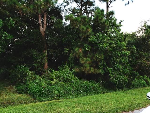 1920 SW Beauregard Beach, Port Saint Lucie, FL 34953 (#RX-10749370) :: Heather Towe | Keller Williams Jupiter
