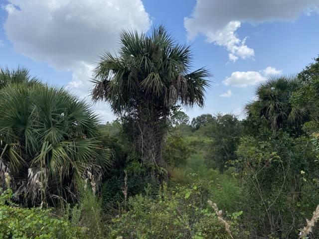 16722 NW 320th Street, Okeechobee, FL 34972 (#RX-10751057) :: Dalton Wade