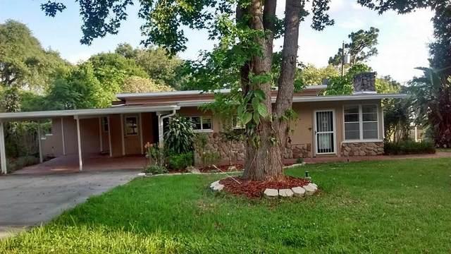 367 Palm Lane, Clermont, FL 34711 (MLS #RX-10751576) :: Castelli Real Estate Services