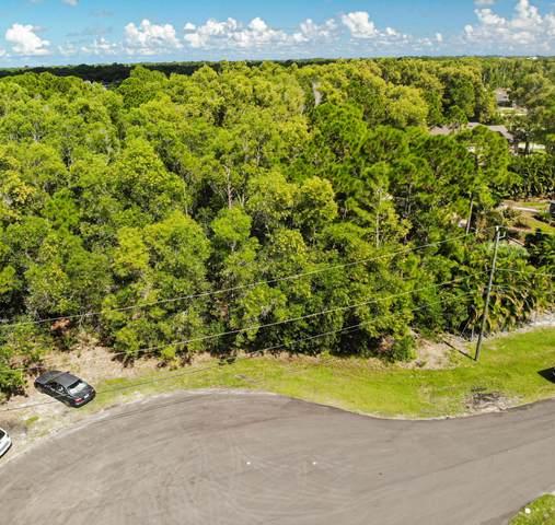 6625 NW Rodin Court, Port Saint Lucie, FL 34983 (MLS #RX-10752378) :: Castelli Real Estate Services