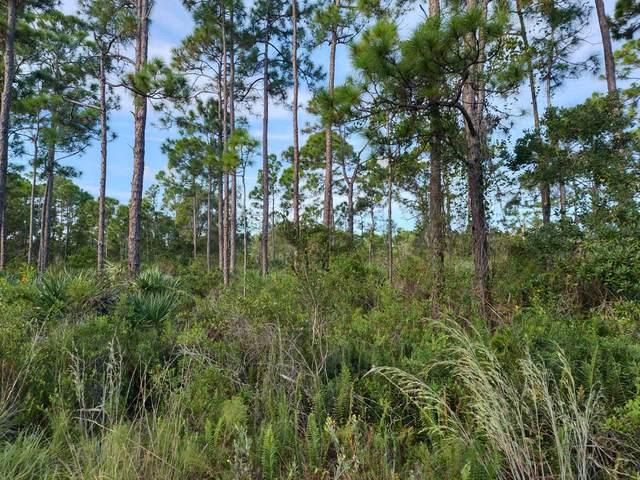 0 Tree Top Trail, Fort Pierce, FL 34951 (#RX-10753189) :: The Reynolds Team | Compass