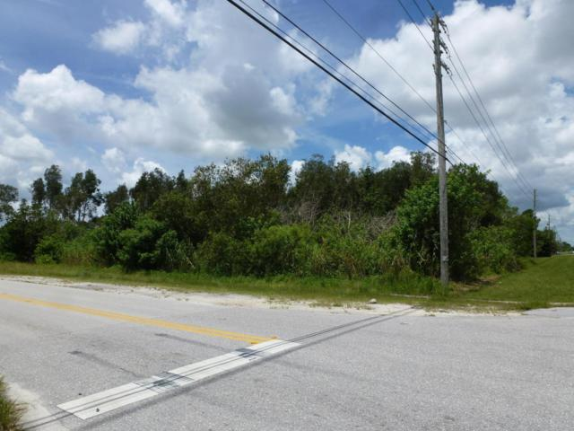 0 Hamlin Boulevard, Loxahatchee, FL 33470 (#RX-10447087) :: Ryan Jennings Group
