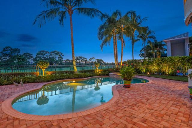 413 Savoie Drive, Palm Beach Gardens, FL 33410 (#RX-10448307) :: Blue to Green Realty
