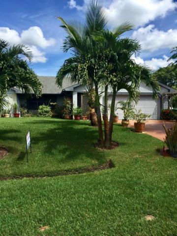 771 SE Celtic Avenue, Port Saint Lucie, FL 34983 (#RX-10462139) :: The Reynolds Team/Treasure Coast Sotheby's International Realty