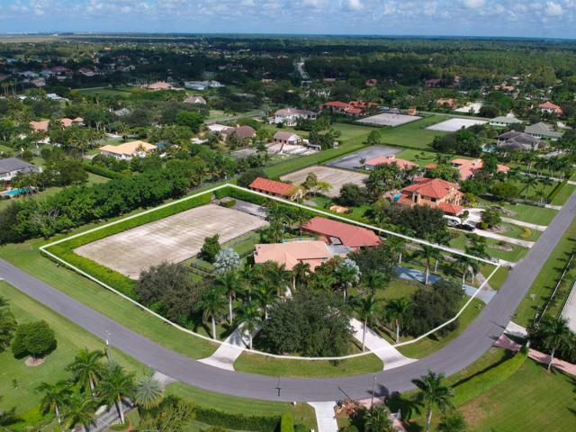 14542 Draft Horse Lane, Wellington, FL 33414 (#RX-10463590) :: The Reynolds Team/Treasure Coast Sotheby's International Realty