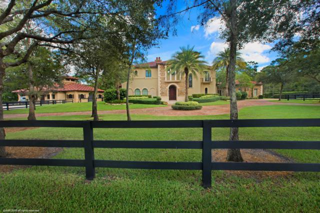 1382 Pelham Road, Wellington, FL 33414 (#RX-10463901) :: The Reynolds Team/Treasure Coast Sotheby's International Realty