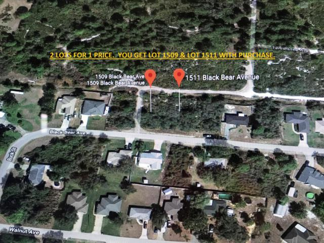 1509 Black Bear Avenue, Lake Placid, FL 33852 (#RX-10478797) :: Ryan Jennings Group